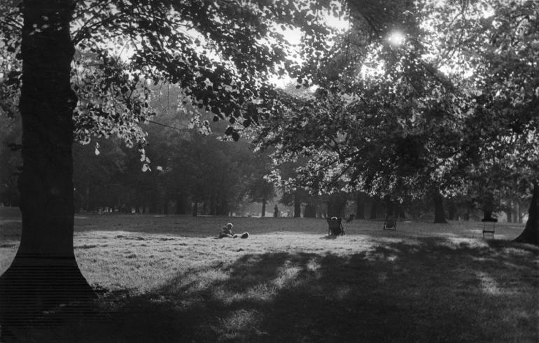 Hyde Park-14 PNG