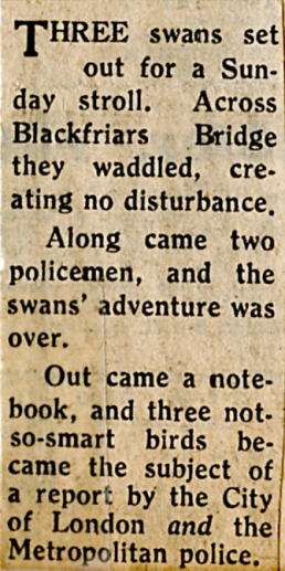 Police& Swans63PNG